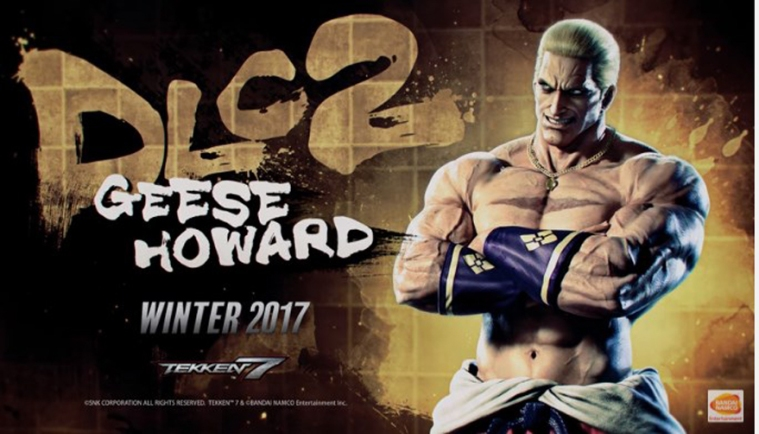 Geese Howard Winter 2017